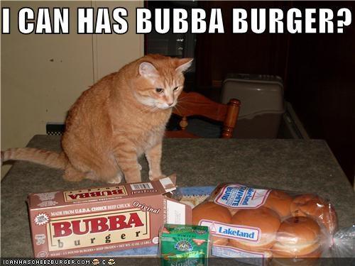 Cheezburger Image 4131456000