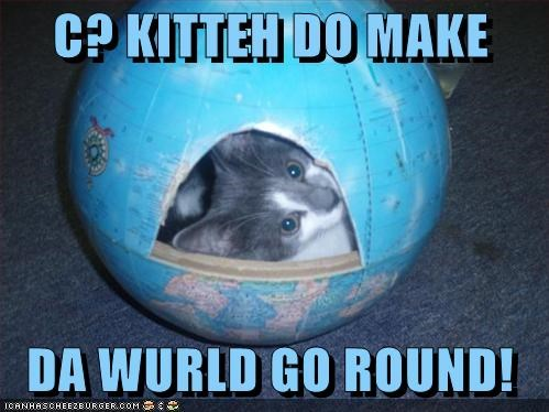 attention caption captioned cat center cute globe kitten proof pun spinning whole world