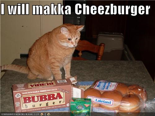 Cheezburger Image 4132425984