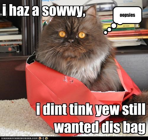 i haz a sowwy, i dint tink yew still wanted dis bag oopsies