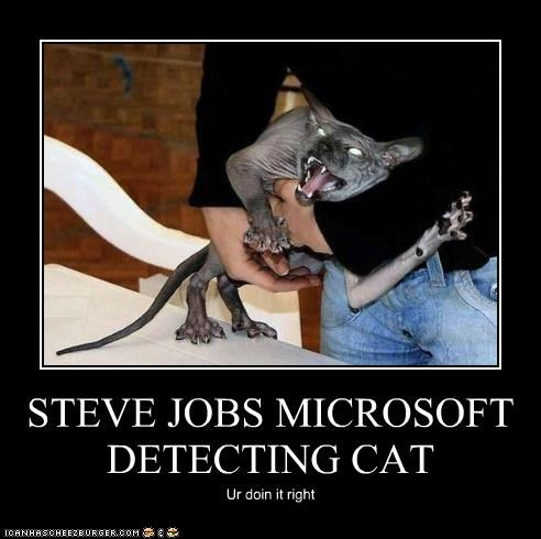 STEVE JOBS MICROSOFT DETECTING CAT Ur doin it right