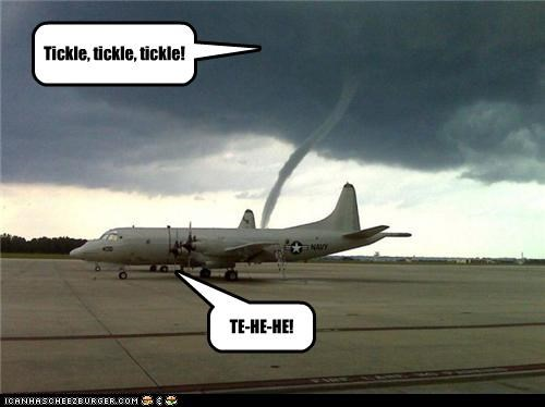 Tickle, tickle, tickle! TE-HE-HE!