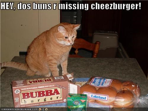 Cheezburger Image 4133012736