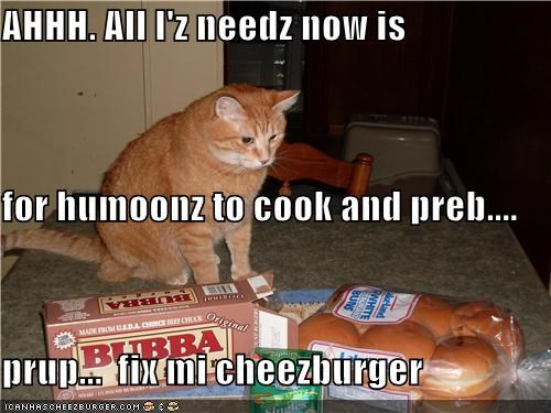 Cheezburger Image 4133016064