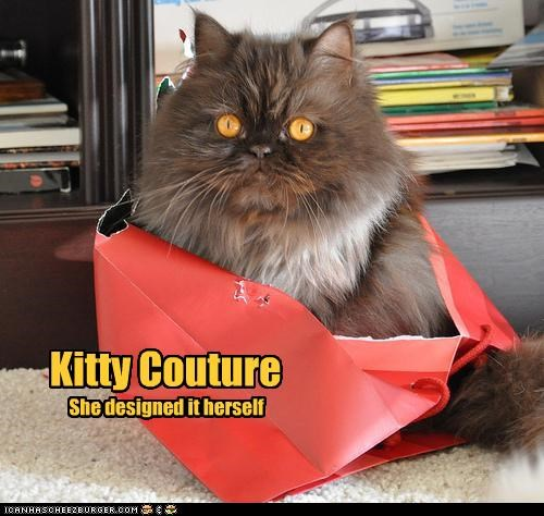 box caption captioned cat couture designed DIY kitty persian - 4133204224