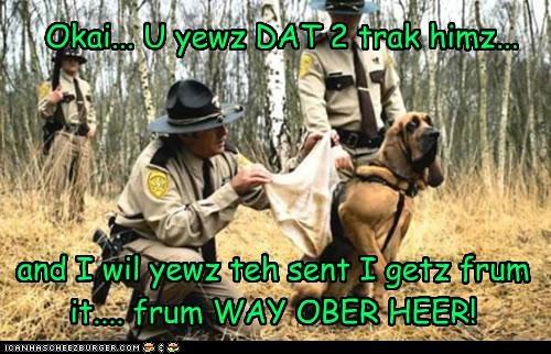 Okai... U yewz DAT 2 trak himz... and I wil yewz teh sent I getz frum it.... frum WAY OBER HEER!