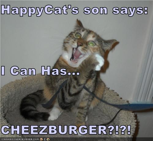 Cheezburger Image 4134599680