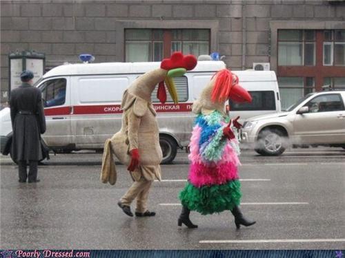 costume date sad chicken wtf - 4135091456