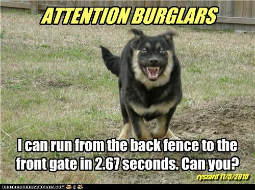 ATTENTION BURGLARS I can run from the back fence to the front gate in 2.67 seconds. Can you? ryszard 11/5/2010