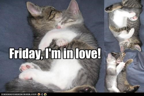cute friday-im-in-love kitten love multipanel napping - 4136133120
