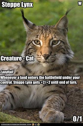 Steppe Lynx W Creature - Cat 0/1 Landfall Whenever a land enters the battlefield under your control, Steppe Lynx gets +2/+2 until end of turn.
