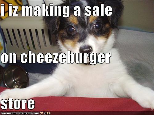 Cheezburger Image 4137356288