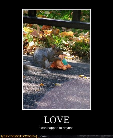 squirrel,love,turtle