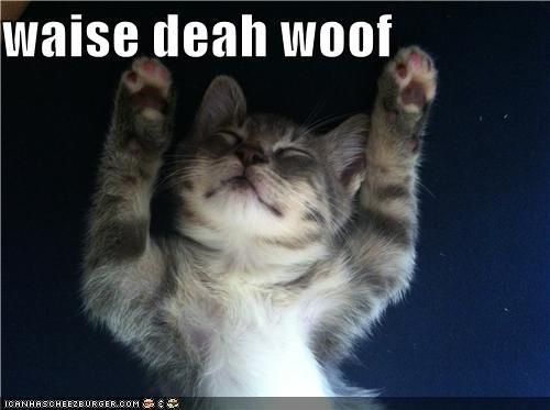 waise deah woof