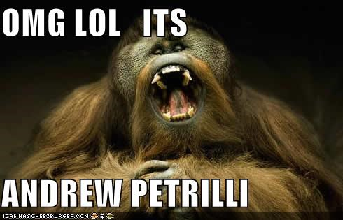 OMG LOL   ITS   ANDREW PETRILLI