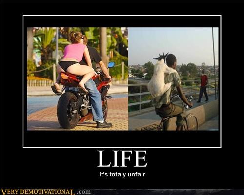 Sexy Ladies life unfair motorcycle - 4138561792