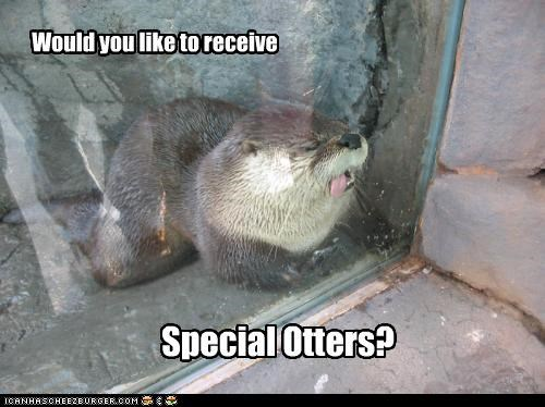 best of week,critters,otters,spam mail,special,special offers
