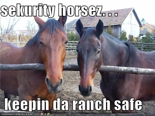 sekurity horsez. . .  keepin da ranch safe