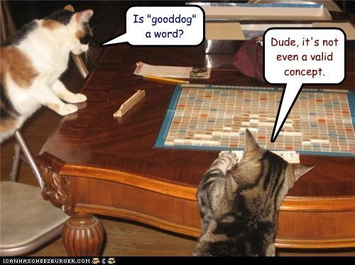 caption,captioned,cat,Cats,concept,false,game,good dog,Hall of Fame,invalid,question,scrabble,two,word