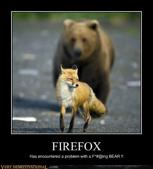 internet,bear,firefox
