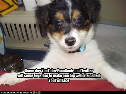 Some day YouTube, FaceBook, and Twitter will come together to make one big website called: YouTwitFace