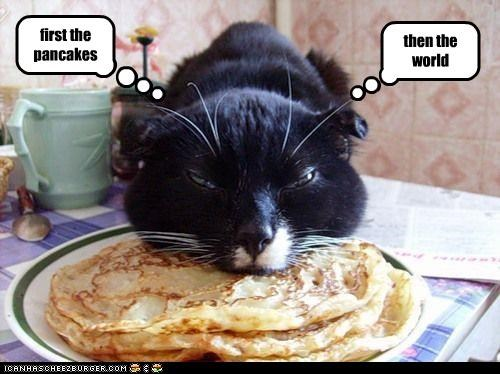 caption captioned cat conquest eating first Hall of Fame noms pancakes second steps world world domination - 4143721472