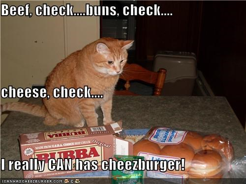 Cheezburger Image 4144877824