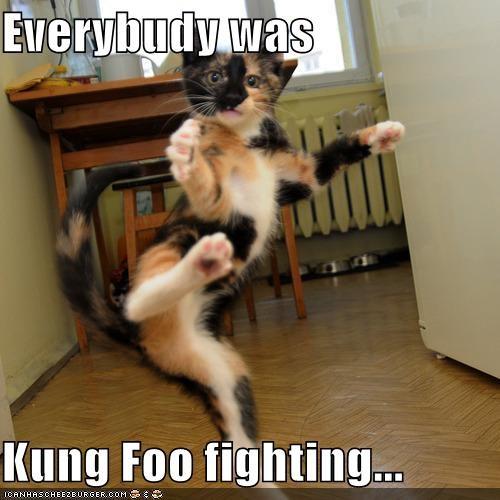 Everybudy was  Kung Foo fighting...