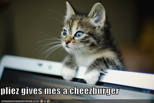 Cheezburger Image 4146521600