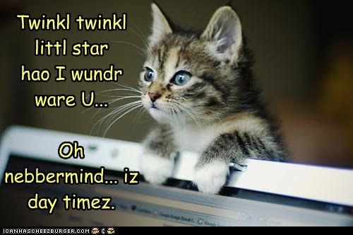 Cheezburger Image 4146539776