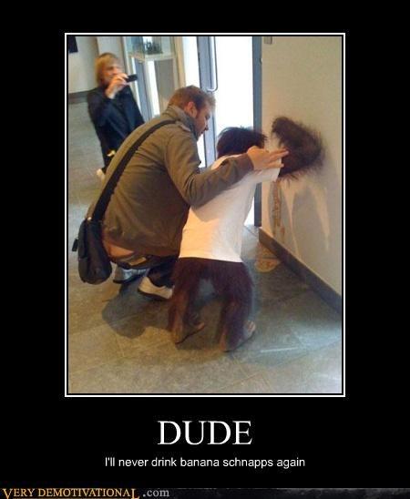 animals drinking mon mon mon nice shirt orangutang vomit wtf - 4147005184