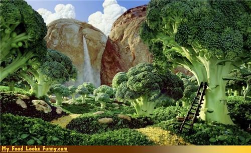 art,broccoli,broccoli forest,carl warner,food landscapes,fruits-veggies,landscapes,photographs