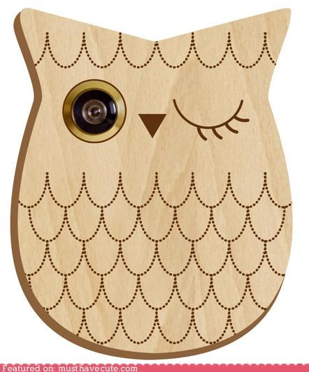 decoration door home Owl peephole winking