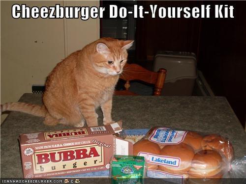 Cheezburger Image 4147497984
