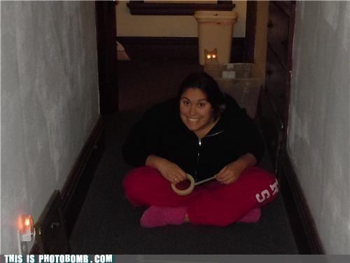 Animal Bomb awesome cat girl photobomb tape terminator - 4147686400
