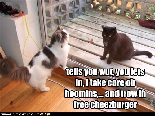 Cheezburger Image 4148407808