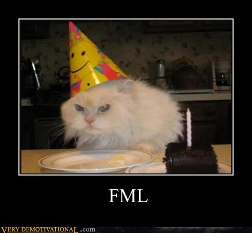 cake,Cats,fml,lies,pets,Sad,unhappy