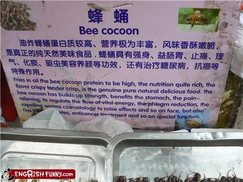 bees engrish food gross