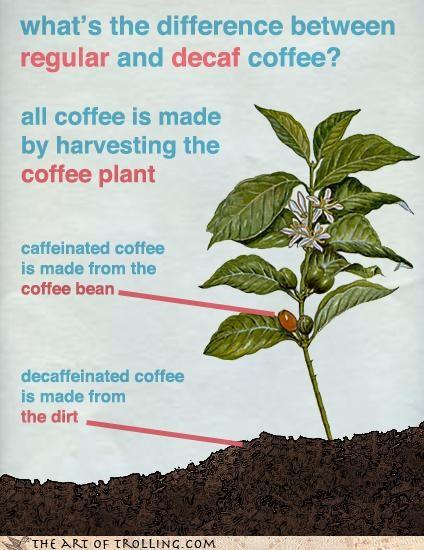 beans caffeine Chart coffee dirt Fair Trade - 4150134528