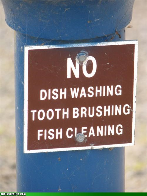 dishes,failboat,fish,oddly specific,signs,toothbrush