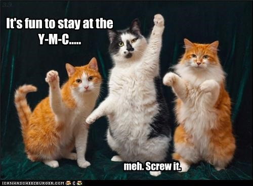 It's fun to stay at the Y-M-C..... meh. Screw it.
