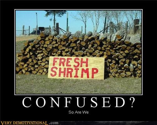 confusion,impossible,shrimp,wood,wtf