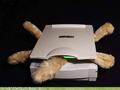 cat copier copy copycat CT Scan paw print printer scan scanner - 4151190784