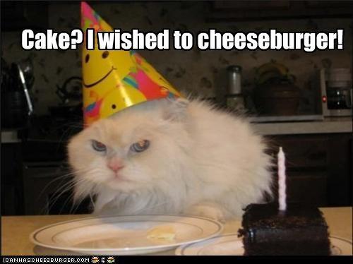 Cheezburger Image 4151291136