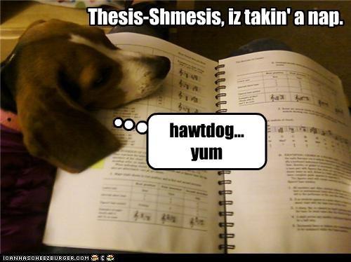Thesis-Shmesis, iz takin' a nap. hawtdog... yum