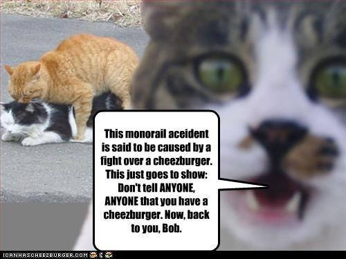 Cheezburger Image 4152337152