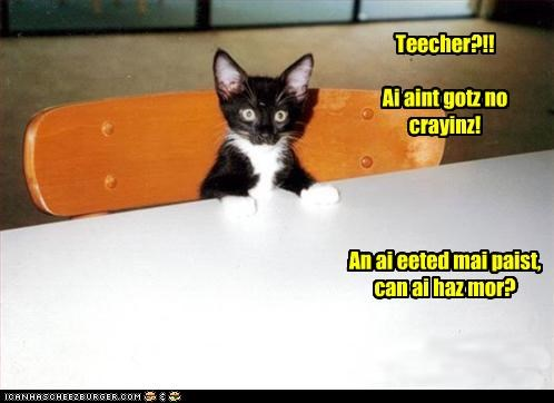 caption captioned cat chair class classroom crayons eaten kitten more Paste please question school seat sitting