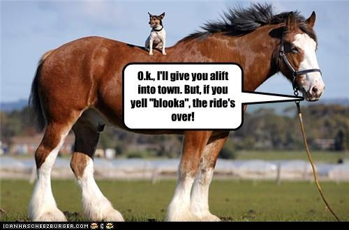 """O.k., I'll give you alift into town. But, if you yell """"blooka"""", the ride's over!"""