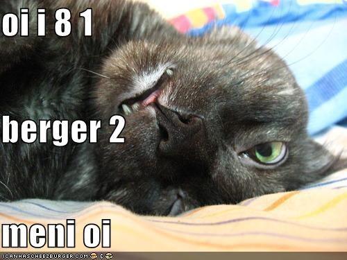 Cheezburger Image 4155003904