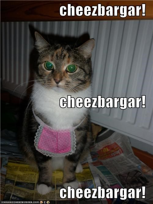 Cheezburger Image 4155065856